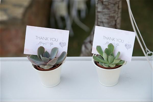 Cactus wedding favours