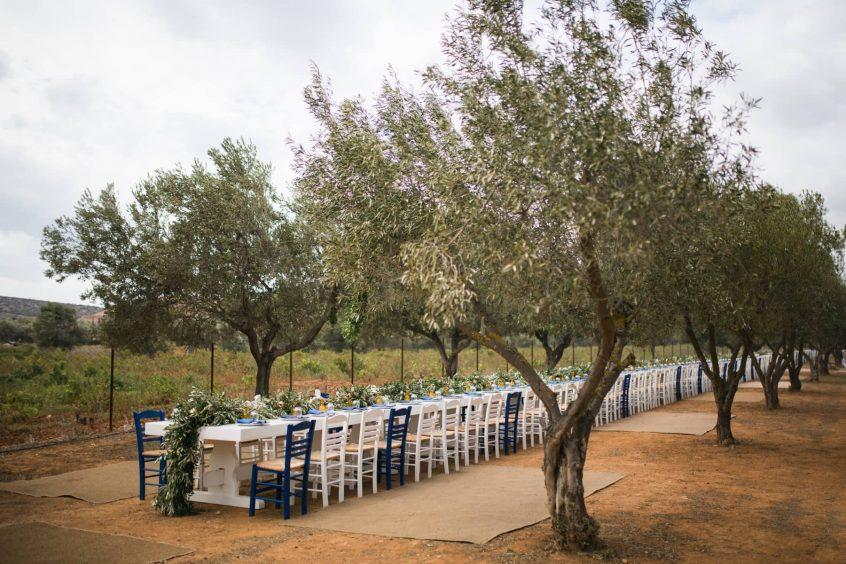 Farm outdoor reception